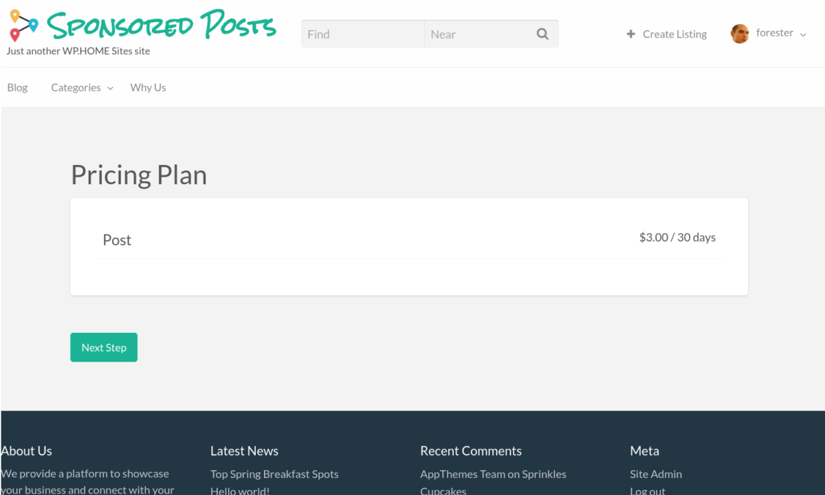 sponsored posts pricing plan basic